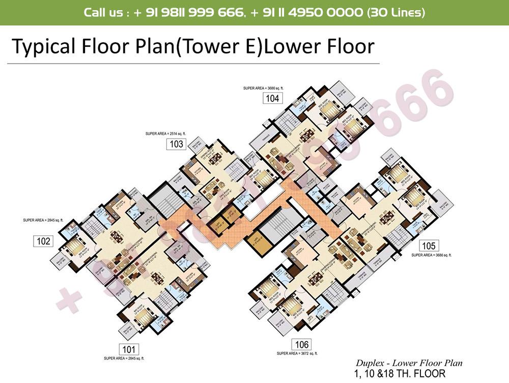 Typical Floor Plan Duplex Lower Level