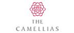 DLF Camellias