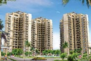 Sidhartha NCR Green Gurgaon